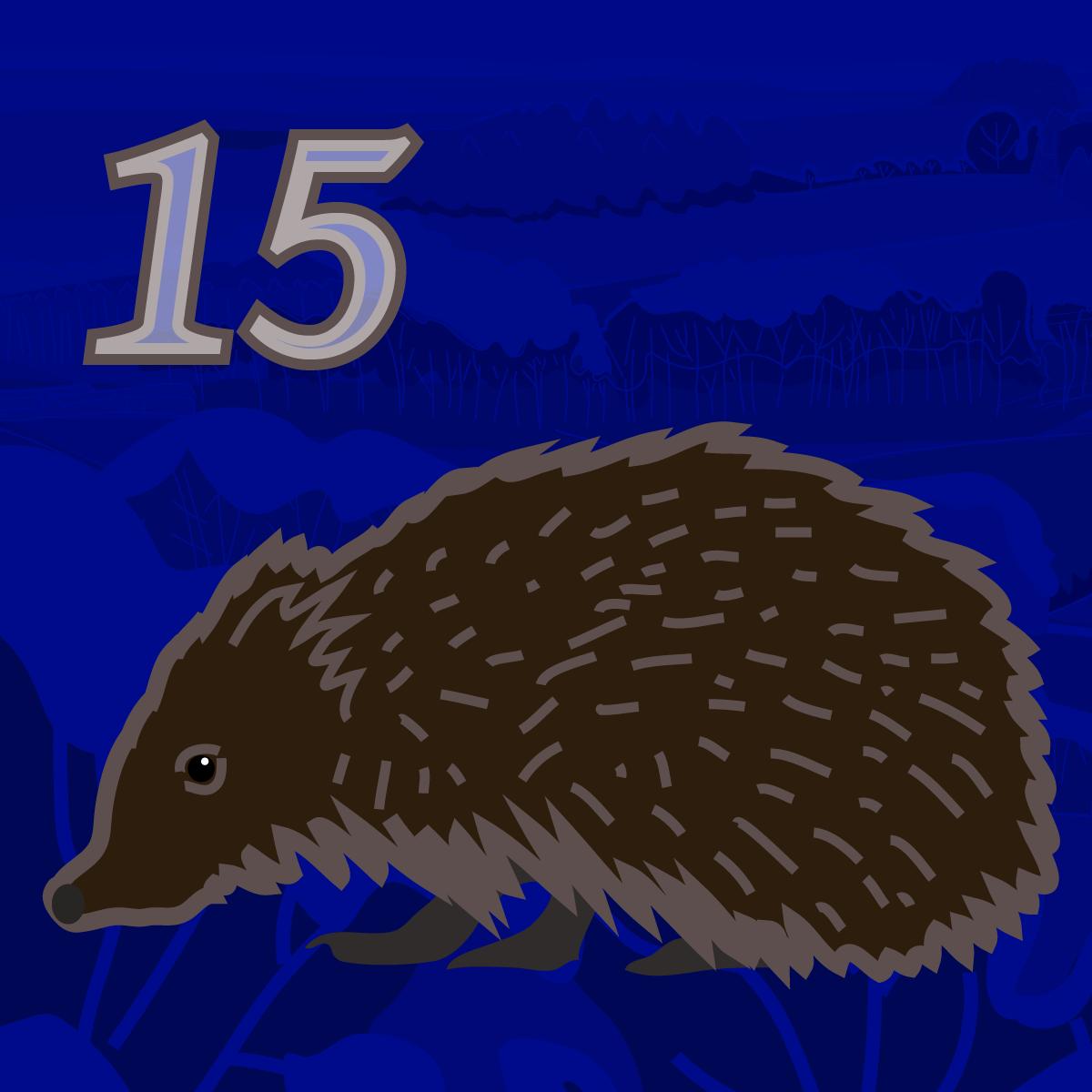 Hedgehog Advent 15