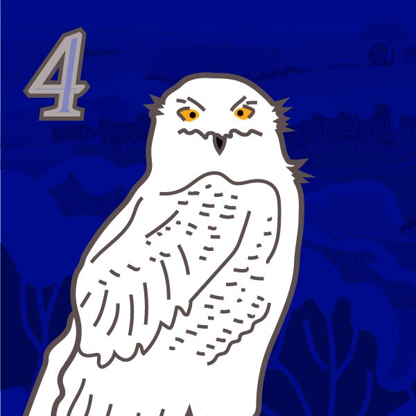 Snow owl Advent 4
